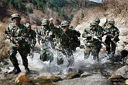 Korean Combat training